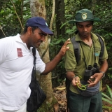086   Ahmed Al Balushi inspects a moderately venomous green whip snake held by conservationist & guide, Mr. Vishan