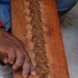 19   المعجون الذي يعزل الخشب عن الما