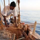 037   1st Mate Khamis Al Hamdani and the ship's goat