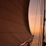105   Sailing at sunset