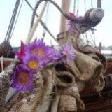 099   Flowers stuck on the sails for good luck